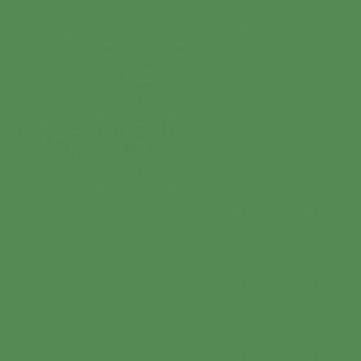 Fondale in carta 2,72x10m Deep Green - 12
