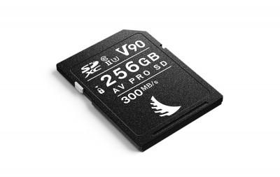 AV PRO SD MK2 256GB V90 (1 PACK)