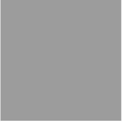 Fondale in carta 2,72x10m Pursuit Grey