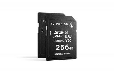 Match Pack for Panasonic EVA1 256GB | 2 PACK